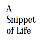 A Snippet of Life (small)