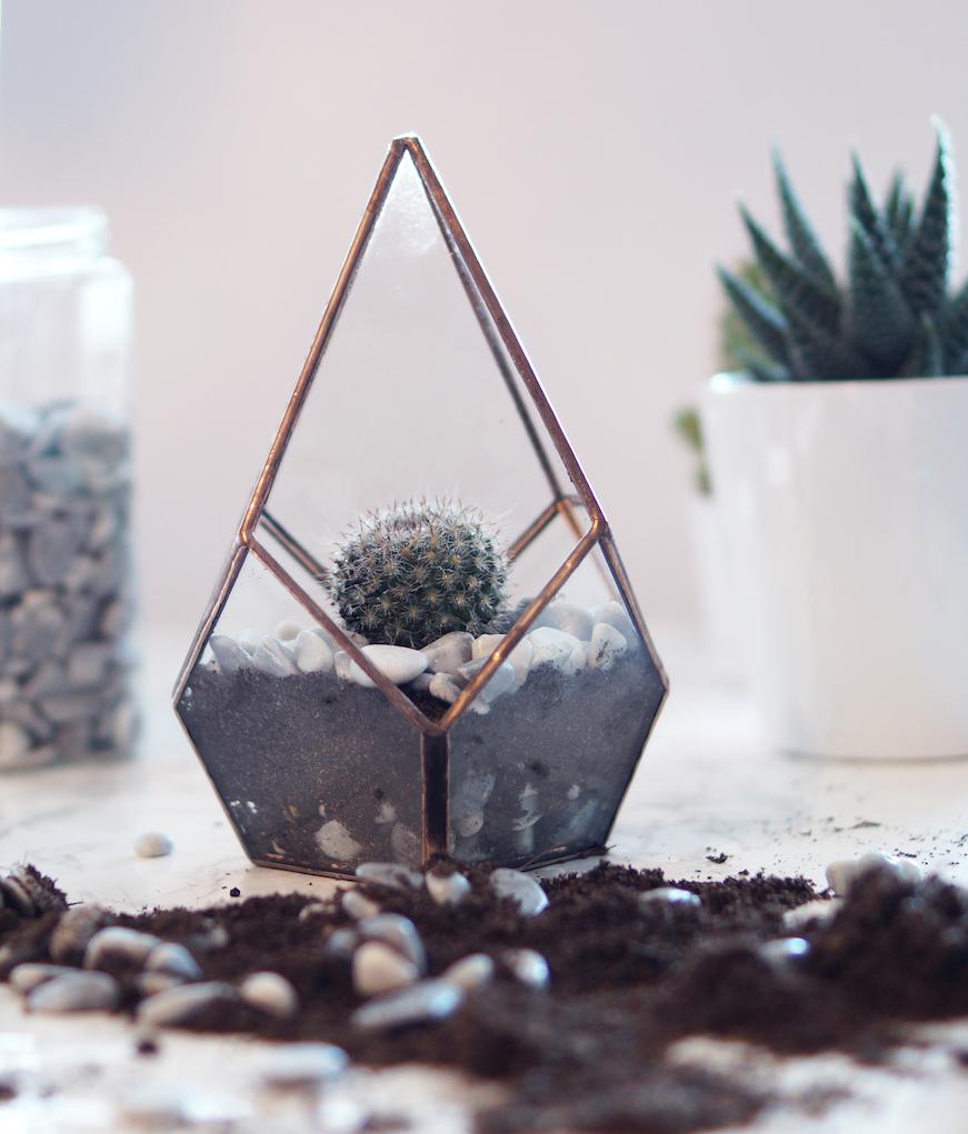 A cute DIY Cactus Glass Terrarium